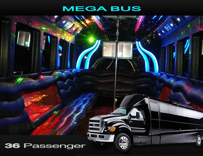 Guide to the Ultimate Party Bus Adventure!